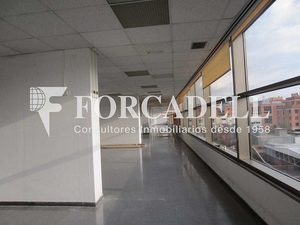 IMG_0304 - Oficina en alquiler en calle Rosa Sensat, La Vila Olímpica en Barcelona - 263424156