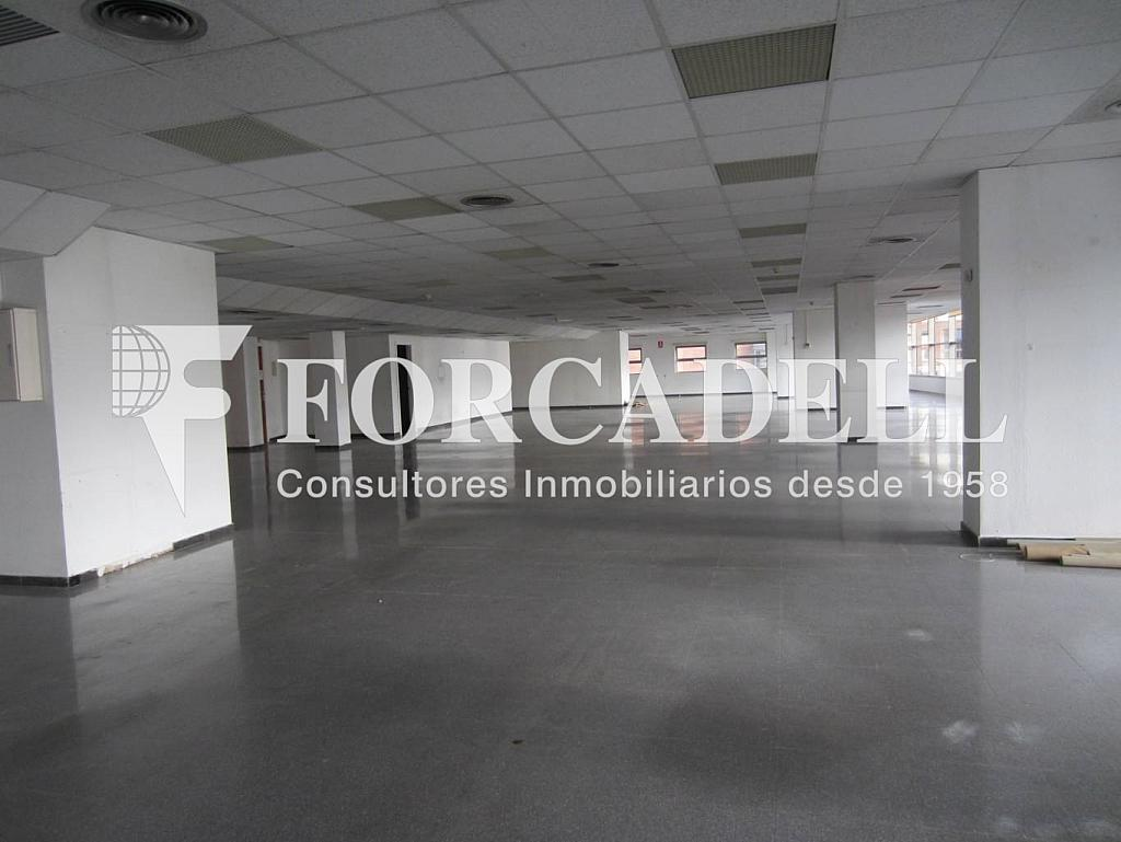 IMG_0305 - Oficina en alquiler en calle Rosa Sensat, La Vila Olímpica en Barcelona - 263424159