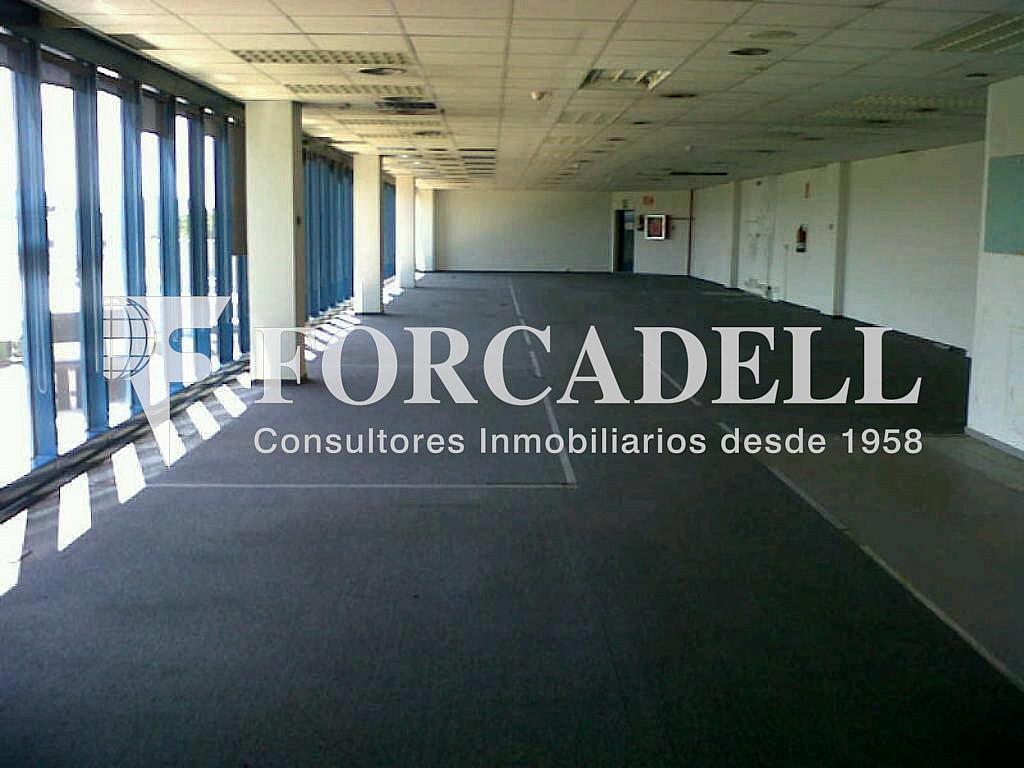 IMG00192-20120426-1536 - Oficina en alquiler en calle Garrotxa, Prat de Llobregat, El - 263424222