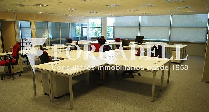 Oficina 2 - Oficina en alquiler en calle Maresme, Badalona - 269535457