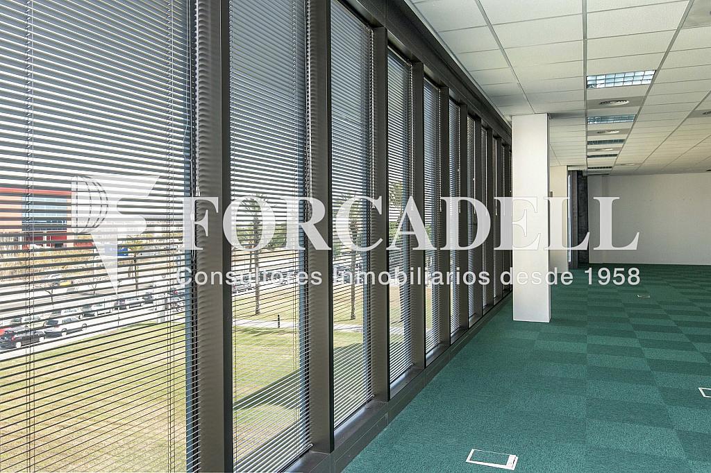 _DSC2967 - Oficina en alquiler en calle Garrotxa, Prat de Llobregat, El - 329738287