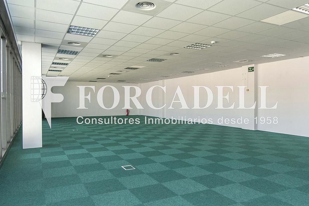 _DSC2965 - Oficina en alquiler en calle Garrotxa, Prat de Llobregat, El - 329738290