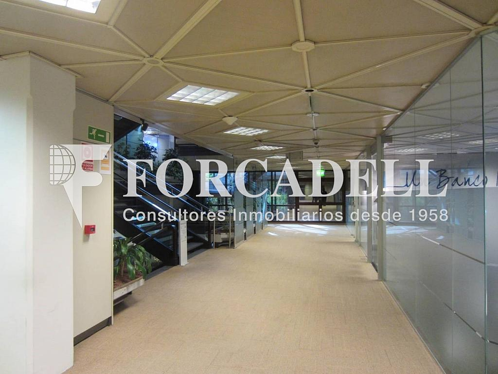 FOTO 6 - Oficina en alquiler en calle Diagonal, Pedralbes en Barcelona - 274814189