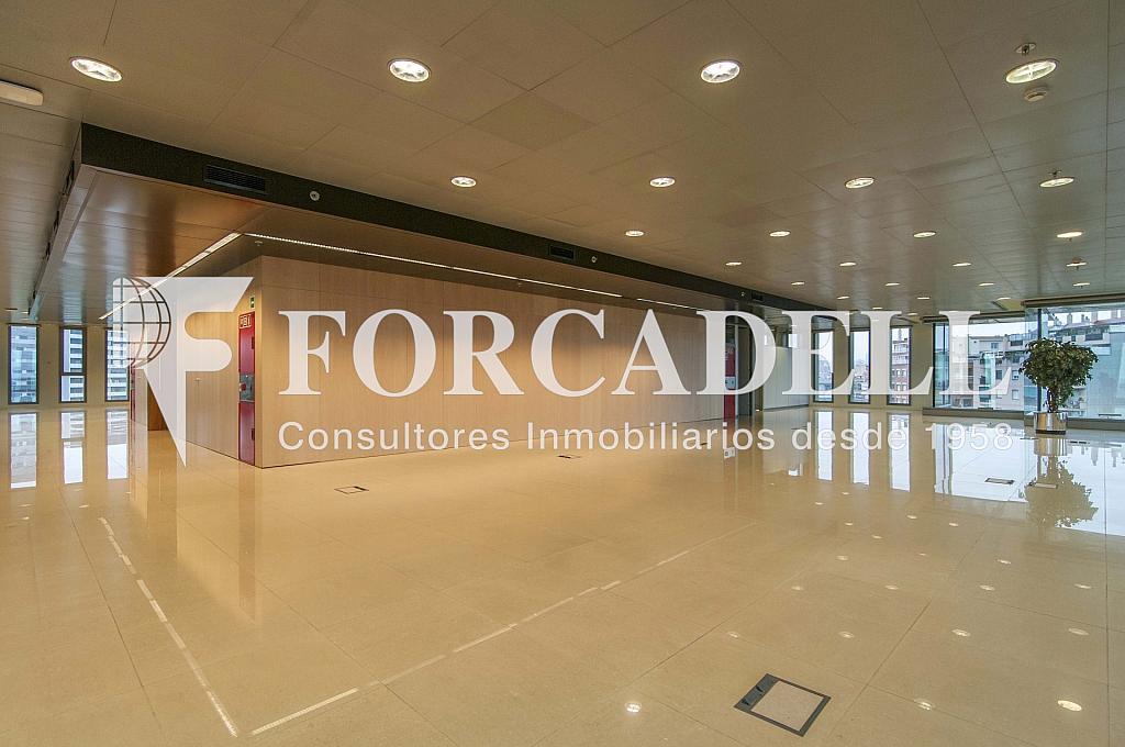 _DSC3633 - Oficina en alquiler en calle Europa, El Gornal en Hospitalet de Llobregat, L´ - 278702183