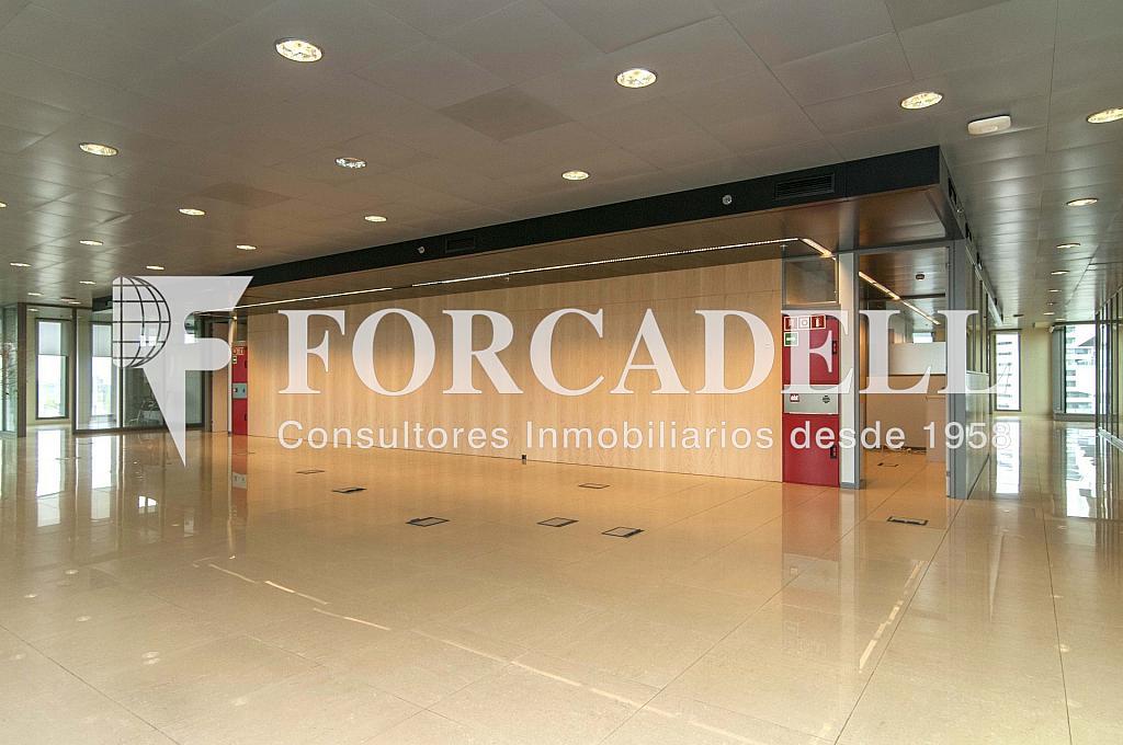 _DSC3695 - Oficina en alquiler en calle Europa, Gran Via LH en Hospitalet de Llobregat, L´ - 278702204