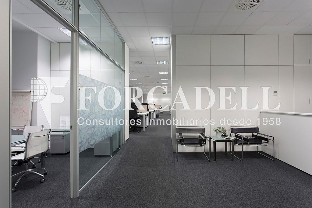Ofi-int-Bull - Oficina en alquiler en calle De Les Corts Catalanes, Sant Martí en Barcelona - 278702249