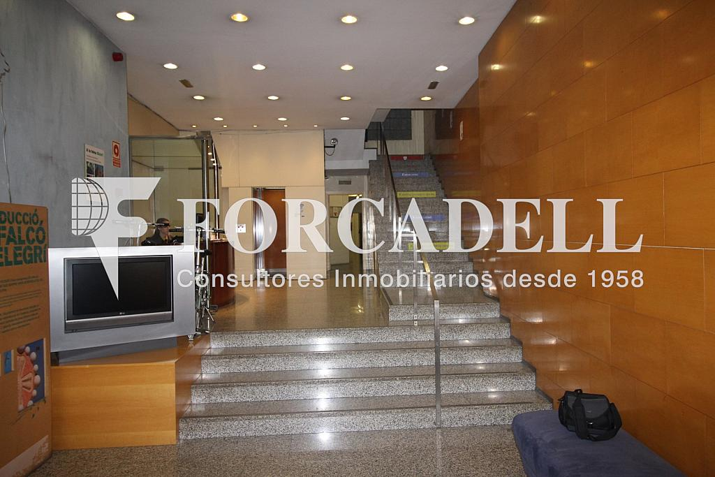 IMG_3017 - Oficina en alquiler en calle Torrent de Lolla, Vila de Gràcia en Barcelona - 282037288
