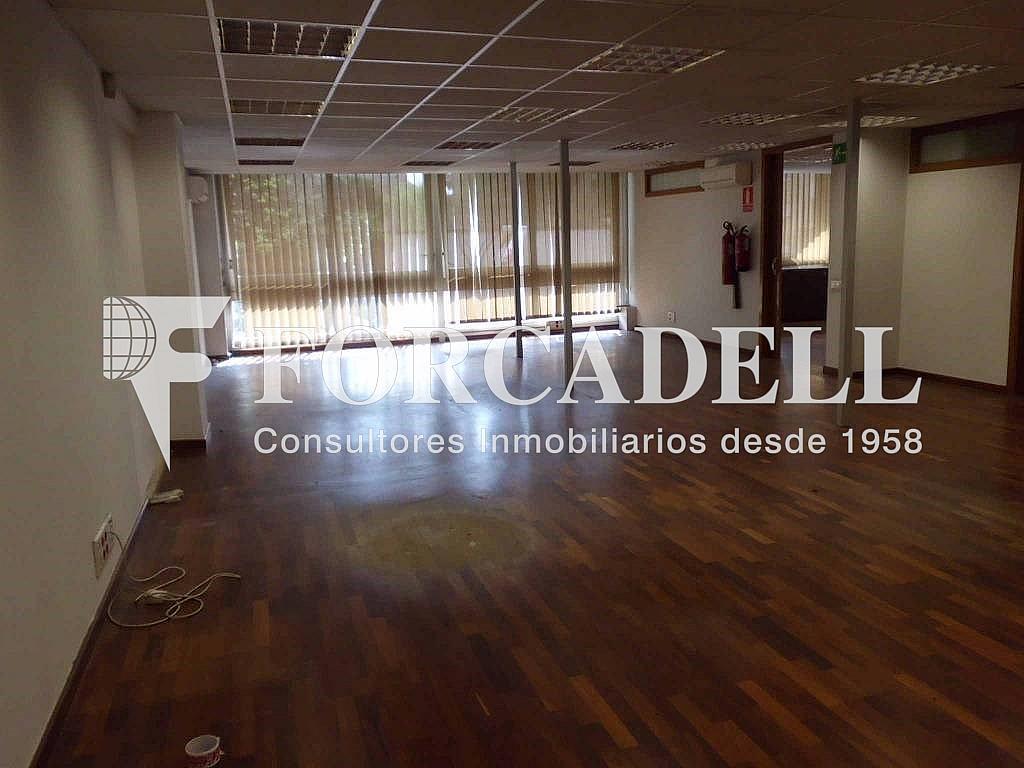 IMG_0013_(1024_x_768) - Oficina en alquiler en calle Numància, Sants en Barcelona - 282037303