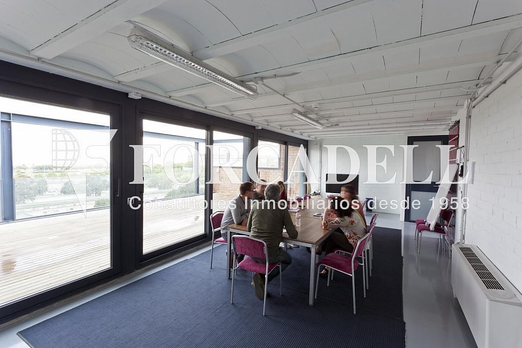 _MG_1669 - Oficina en alquiler en calle Taulat, El Poblenou en Barcelona - 282037441