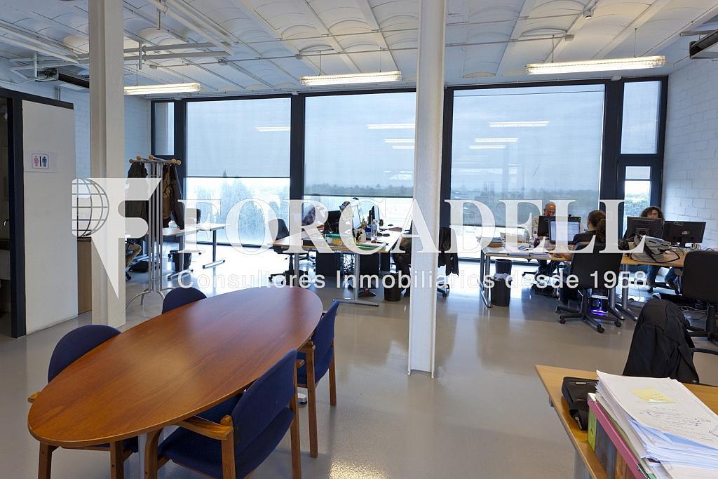 _MG_1663 - Oficina en alquiler en calle Taulat, El Poblenou en Barcelona - 282037447
