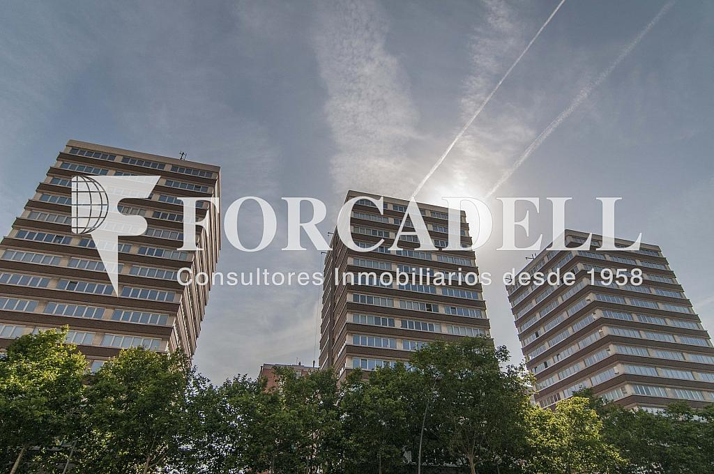 _DSC8335 - Oficina en alquiler en calle Meridiana, La Sagrera en Barcelona - 286365579