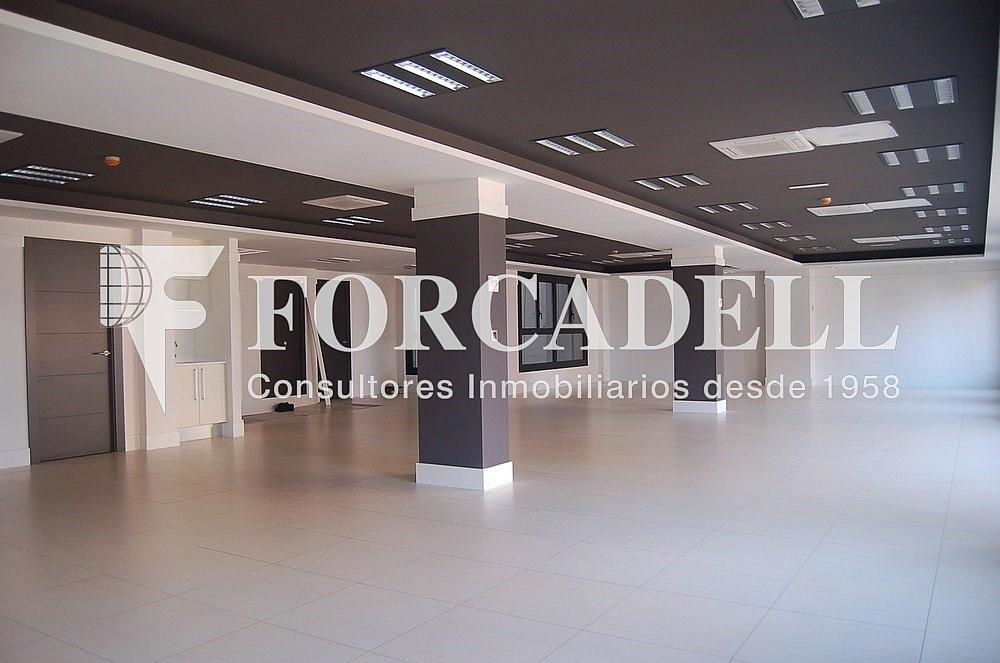 DSC_0082 - Oficina en alquiler en calle Madrid, Sant Ramon-La Maternitat en Barcelona - 286365930