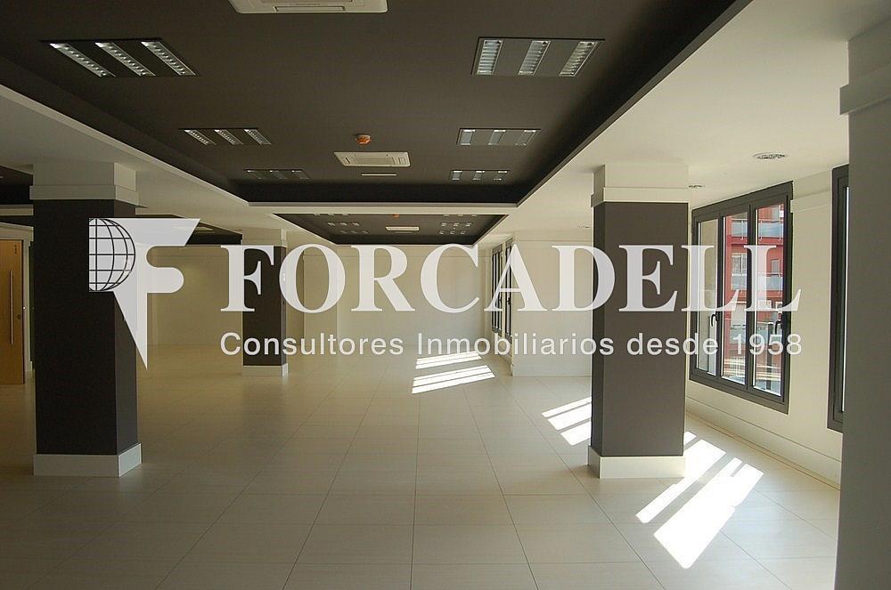 DSC_0096 - Oficina en alquiler en calle Madrid, Sant Ramon-La Maternitat en Barcelona - 286365945