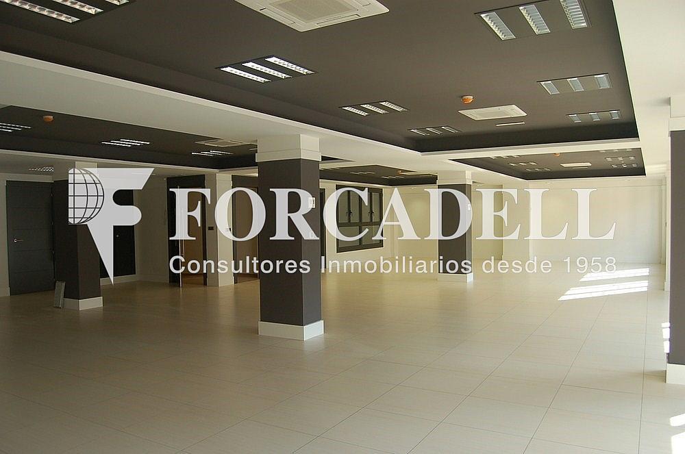 DSC_0098 - Oficina en alquiler en calle Madrid, Sant Ramon-La Maternitat en Barcelona - 286365948