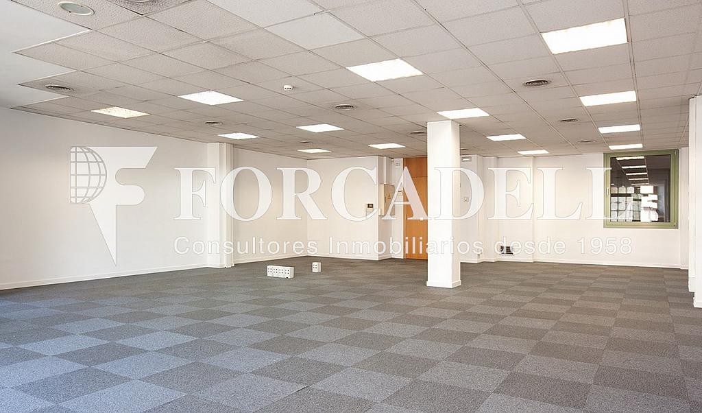 1305 5 - Oficina en alquiler en calle Diagonal, Eixample dreta en Barcelona - 299867528