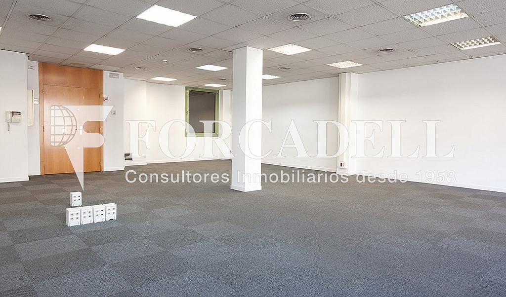 1305 03 - Oficina en alquiler en calle Diagonal, Eixample dreta en Barcelona - 299867558