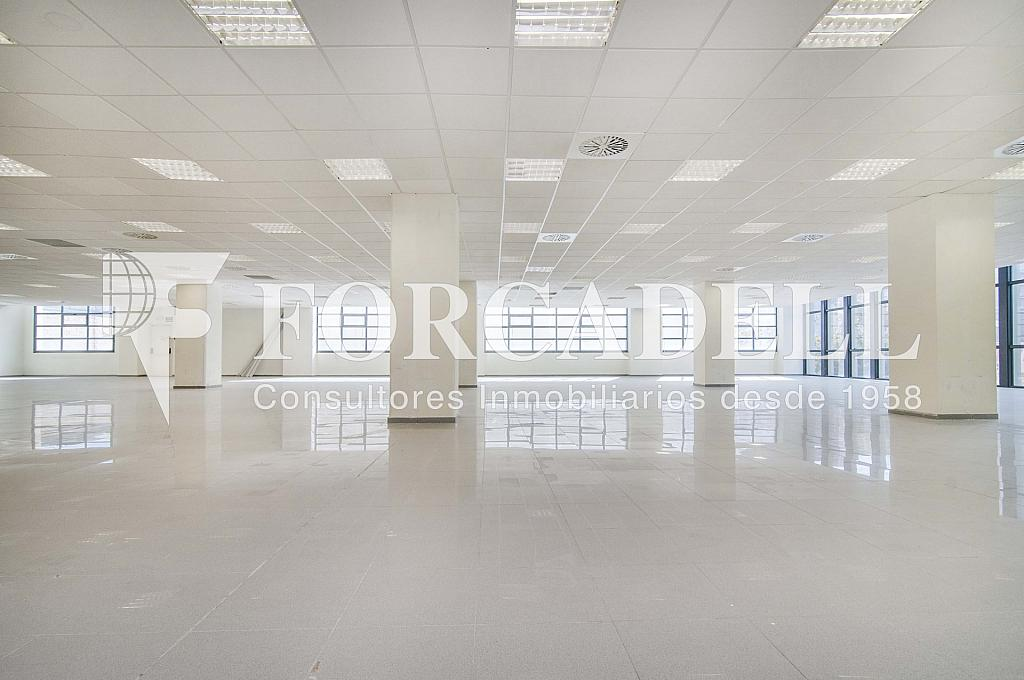 _DSC3614_retoc - Oficina en alquiler en calle Veneçuela, Sant martí en Barcelona - 299867573