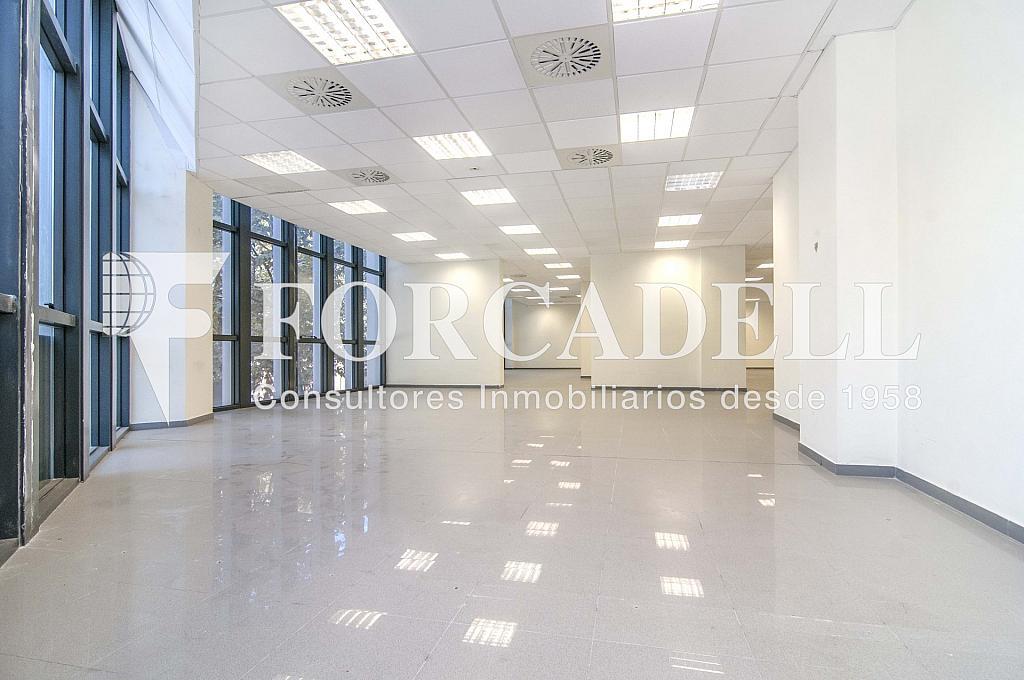 _DSC3606_retoc - Oficina en alquiler en calle Veneçuela, Sant martí en Barcelona - 299867591