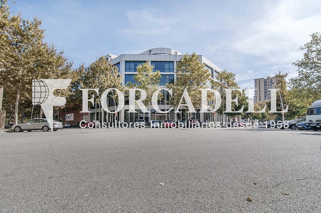 _DSC3656_retoc - Oficina en alquiler en calle Veneçuela, Sant martí en Barcelona - 299867594