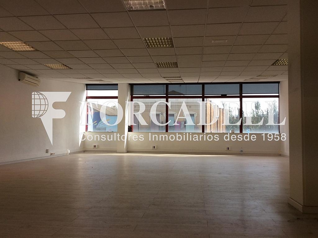 IMG_0270 - Oficina en alquiler en calle Pere IV, Provençals del Poblenou en Barcelona - 341273790