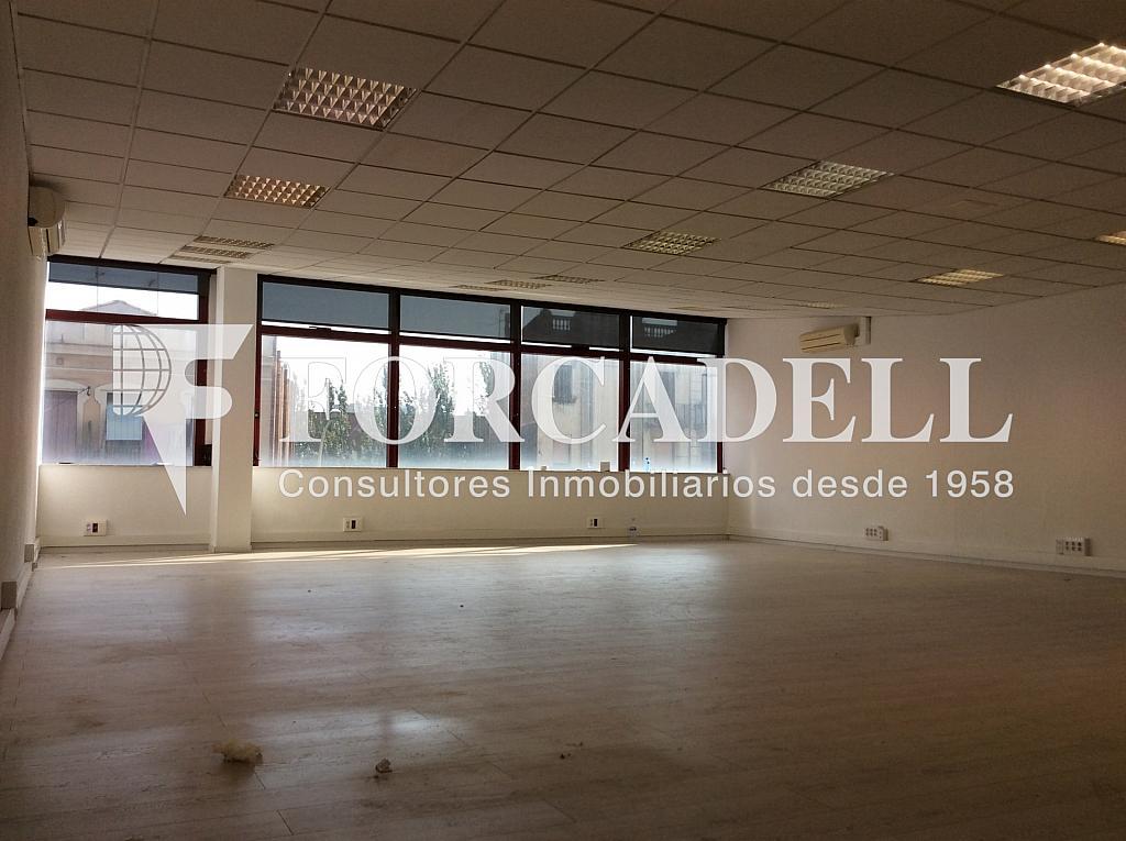 IMG_0272 - Oficina en alquiler en calle Pere IV, Provençals del Poblenou en Barcelona - 341273793