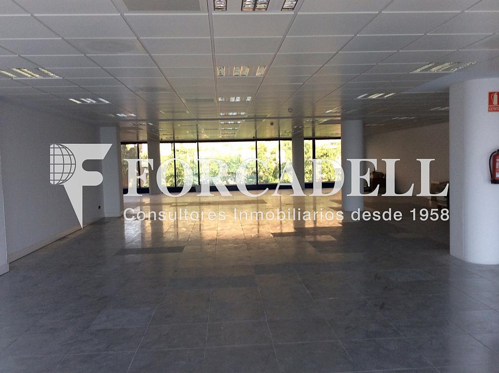 IMG_0009 - Oficina en alquiler en calle Dels Vents, Sant Crist en Badalona - 316896948