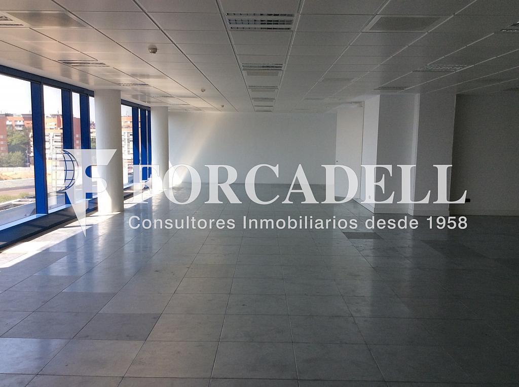 IMG_0001 - Oficina en alquiler en calle Dels Vents, Badalona - 316896954