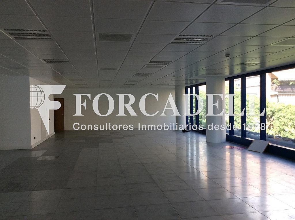 IMG_0006 - Oficina en alquiler en calle Dels Vents, Badalona - 316896963