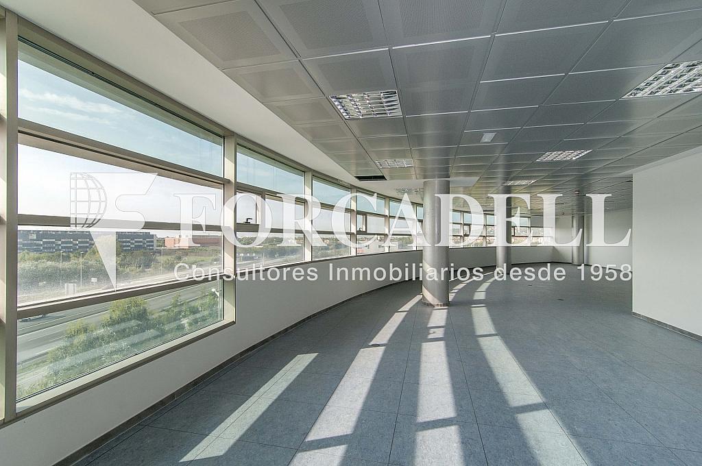 _DSC7877 - Oficina en alquiler en calle De Can Rabadà, Castelldefels - 320935812