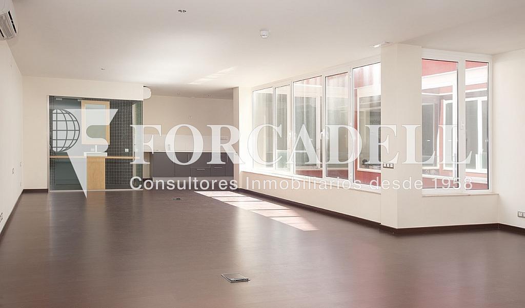 0516 8 - Oficina en alquiler en calle Violant Dhongria, Sants en Barcelona - 333907015
