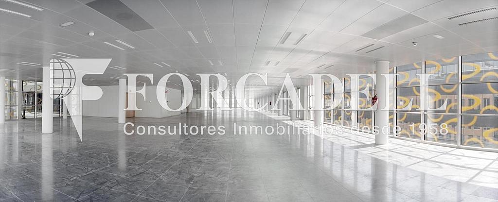 Foto 2 - Oficina en alquiler en parque De la Pau Wtc Almeda Edificio, Cornellà de Llobregat - 329736463