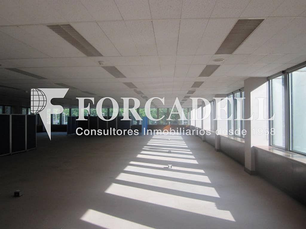 IMG_6646 - Oficina en alquiler en calle Entença, Eixample esquerra en Barcelona - 329736559