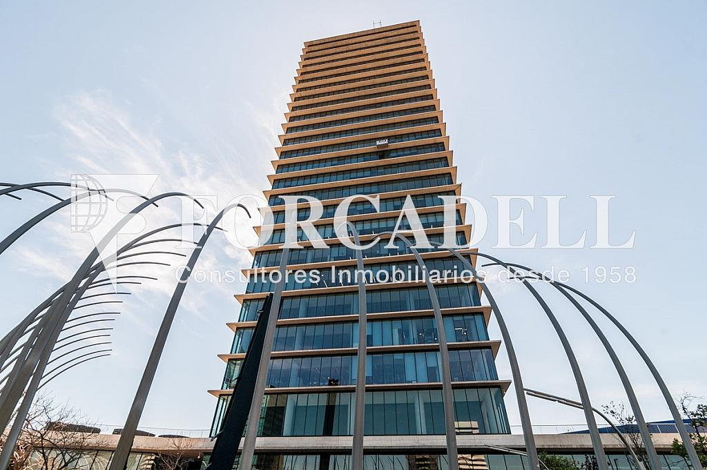 _DSC5745 - Oficina en alquiler en calle Europa Torre Realia, El Gornal en Hospitalet de Llobregat, L´ - 329736604