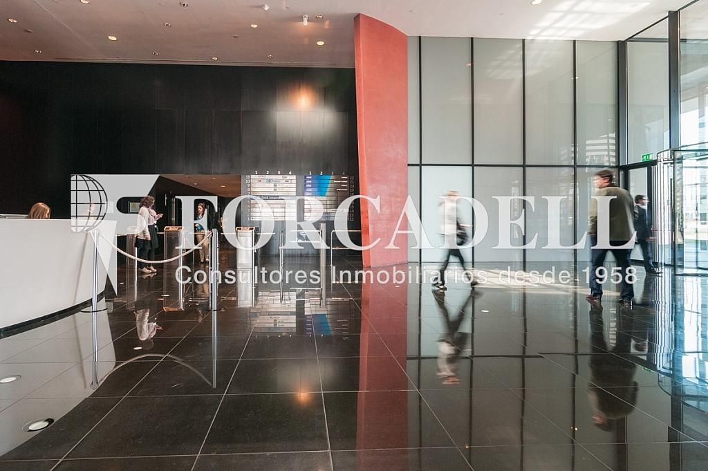 _DSC5740 - Oficina en alquiler en calle Europa Torre Realia, El Gornal en Hospitalet de Llobregat, L´ - 329736610