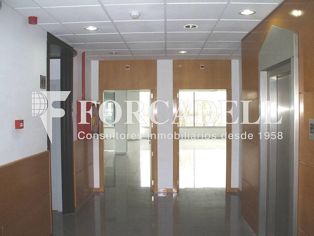 06835 - Oficina en EL PRAT DE LLOBREGAT Ofc. PERIFERIA 4 - Oficina en alquiler en calle Osona, Prat de Llobregat, El - 263426025