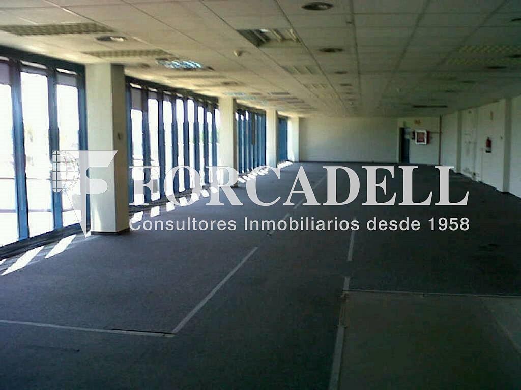 IMG00193-20120426-1537 - Oficina en alquiler en calle Garrotxa, Prat de Llobregat, El - 263427855