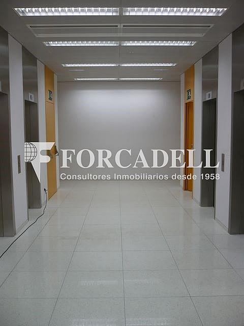 P1030518 - Oficina en alquiler en calle Corts Catalanes, La Bordeta en Barcelona - 263427915