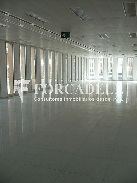 P1030521 - Oficina en alquiler en calle Corts Catalanes, La Bordeta en Barcelona - 263427918