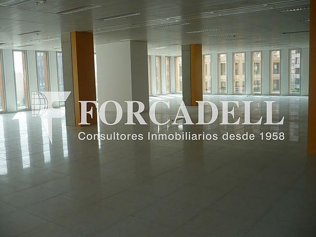 P1030522 - Oficina en alquiler en calle Corts Catalanes, La Bordeta en Barcelona - 263427921