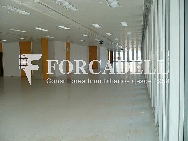 P1030523 - Oficina en alquiler en calle Corts Catalanes, La Bordeta en Barcelona - 263427924