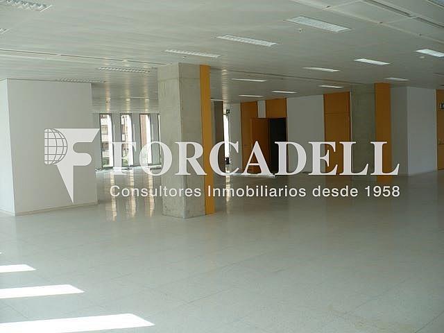 P1030524 - Oficina en alquiler en calle Corts Catalanes, La Bordeta en Barcelona - 263427927