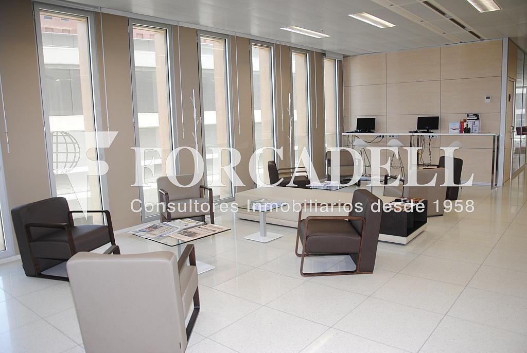 _DSC5455 - Oficina en alquiler en calle Corts Catalanes, La Bordeta en Barcelona - 263427933