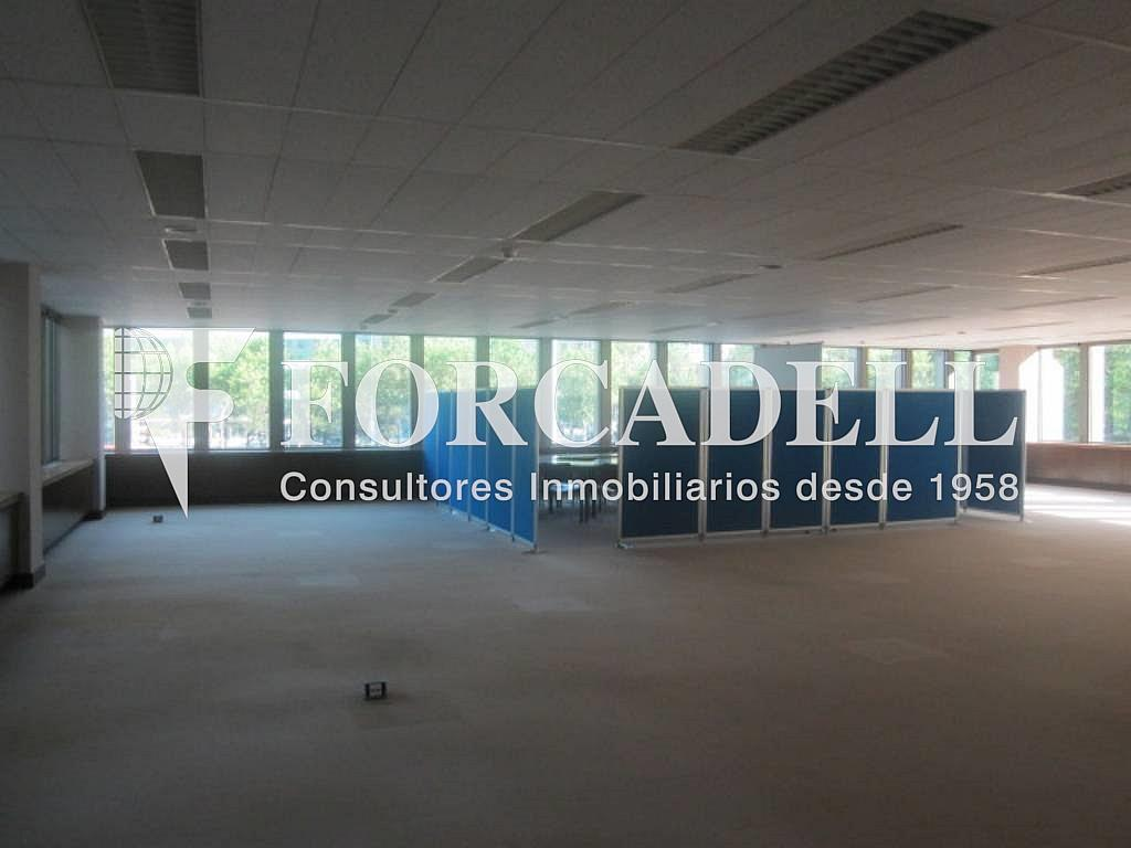 IMG_6647 - Oficina en alquiler en calle Entença, Eixample esquerra en Barcelona - 263427999