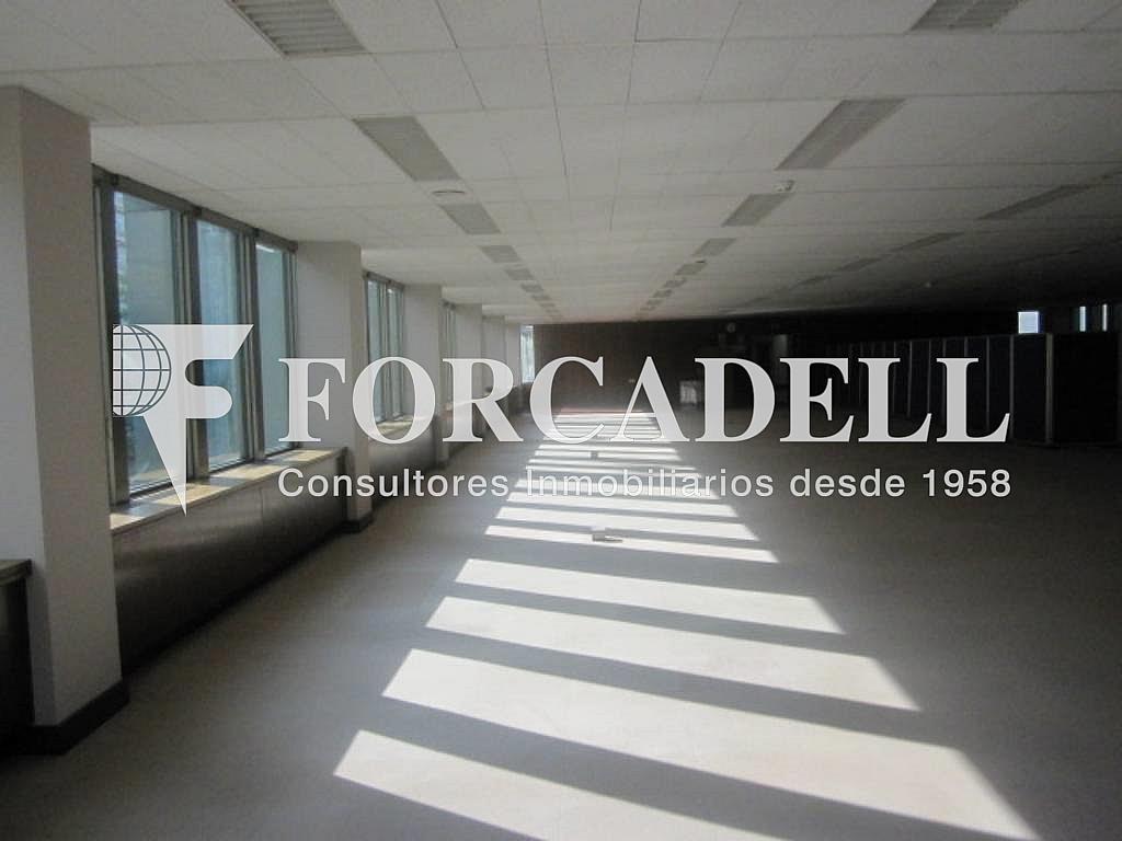 IMG_6649 - Oficina en alquiler en calle Entença, Eixample esquerra en Barcelona - 263428002