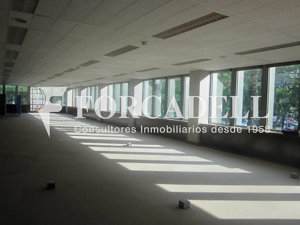 IMG_6652 - Oficina en alquiler en calle Entença, Eixample esquerra en Barcelona - 263428008