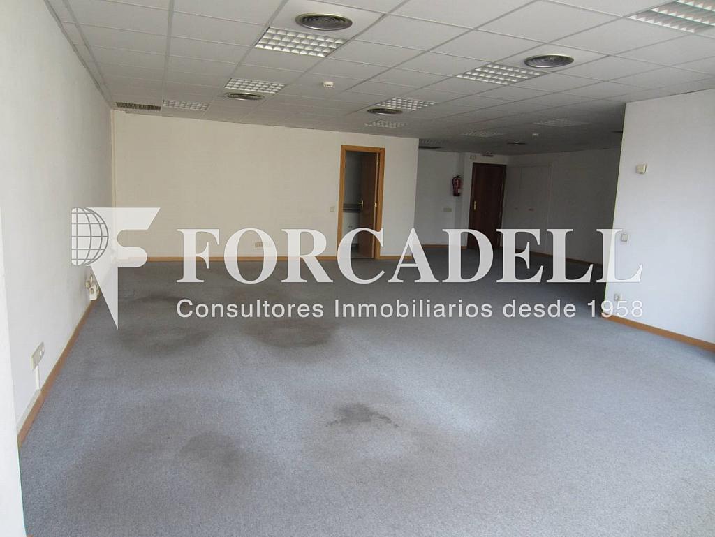 IMG_0255 - Oficina en alquiler en calle Entença, Eixample esquerra en Barcelona - 263426532