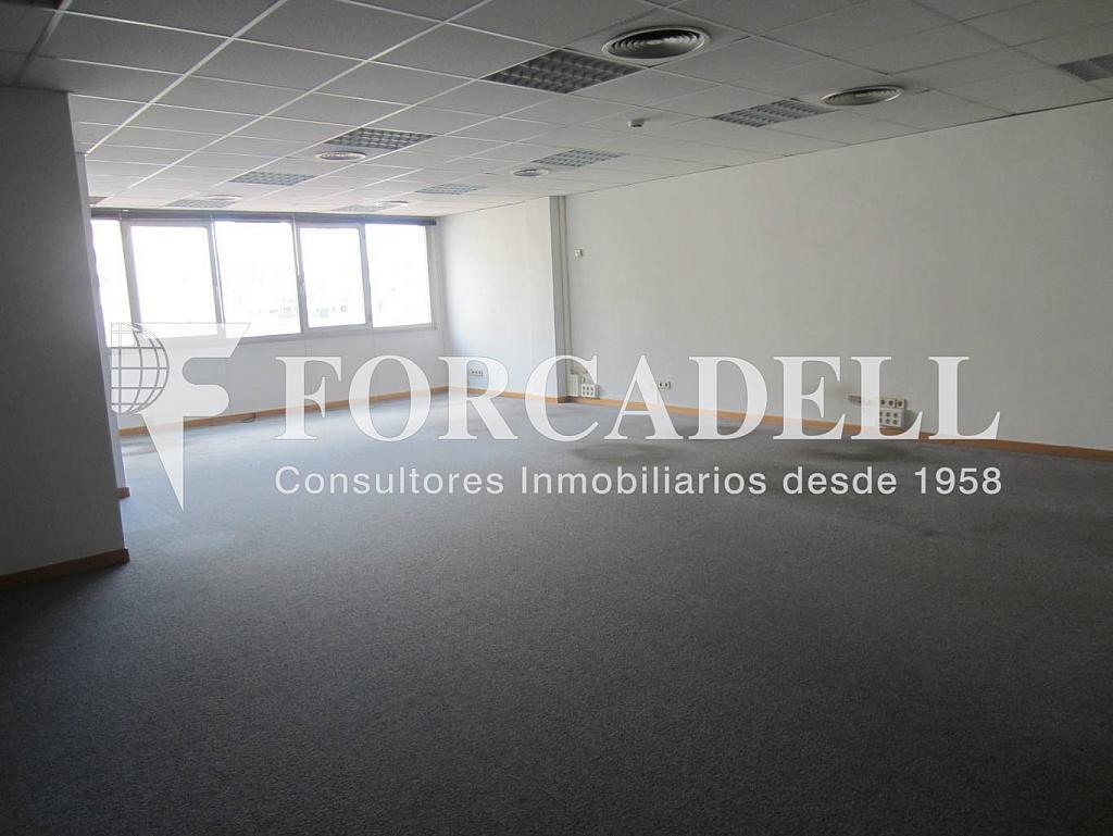 IMG_0258 - Oficina en alquiler en calle Entença, Eixample esquerra en Barcelona - 263426538