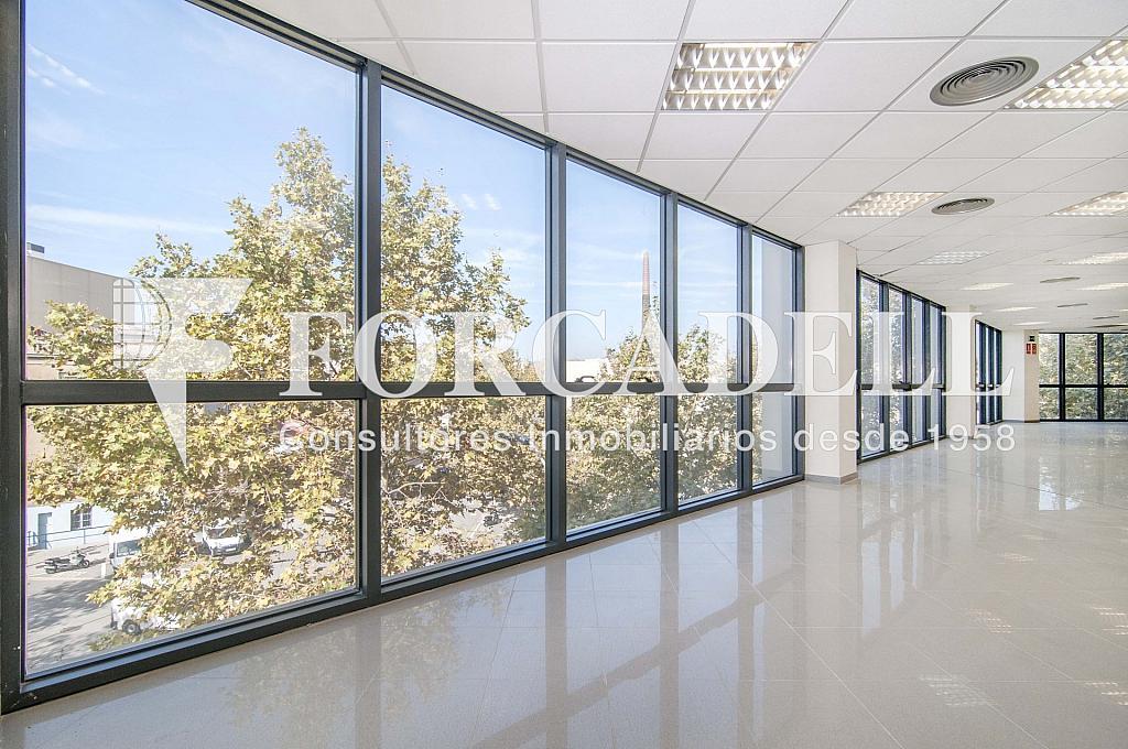 _DSC3556_retoc - Oficina en alquiler en calle Veneçuela, Provençals del Poblenou en Barcelona - 263426628