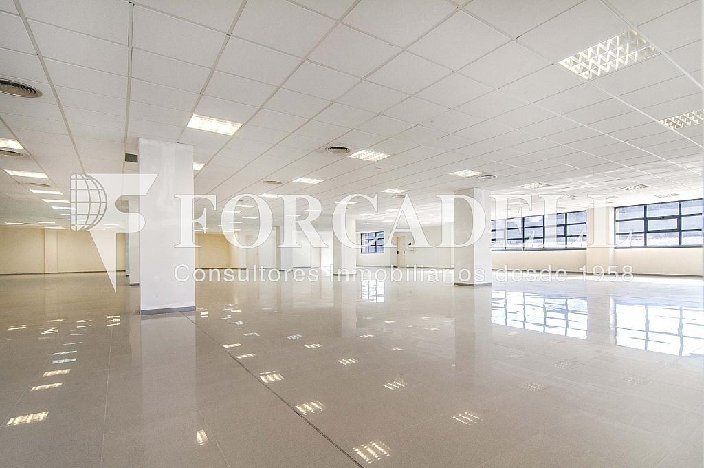 _DSC3566_retoc - Oficina en alquiler en calle Veneçuela, Provençals del Poblenou en Barcelona - 263426634