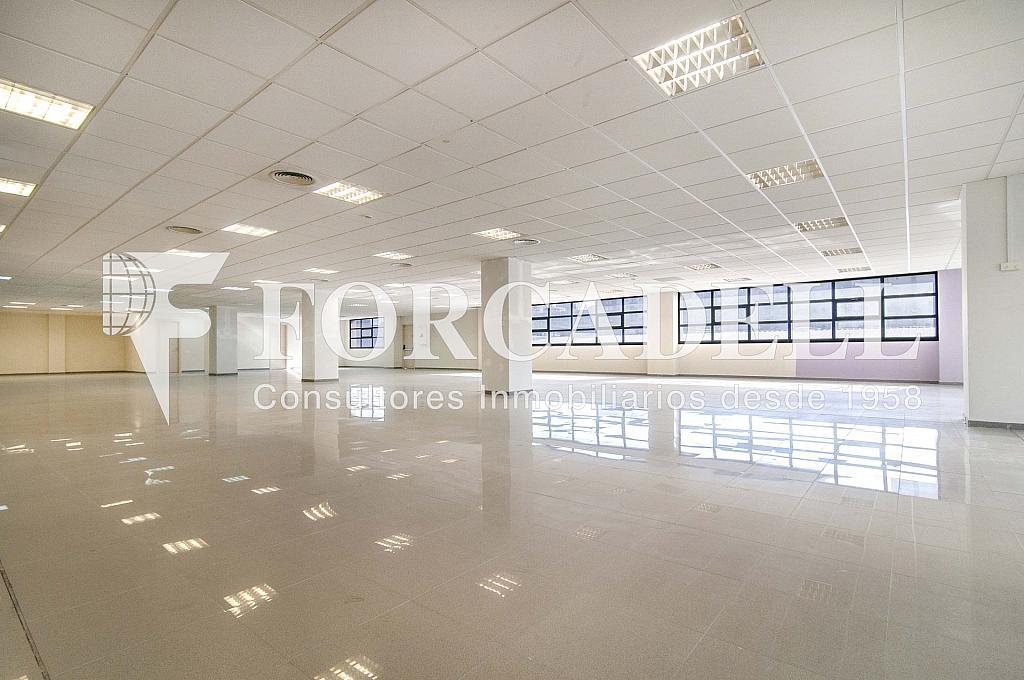 _DSC3567_retoc - Oficina en alquiler en calle Veneçuela, Provençals del Poblenou en Barcelona - 263426637